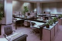 «Золушкино платье» для офиса